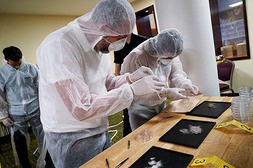 CSI Investigate gallery 3
