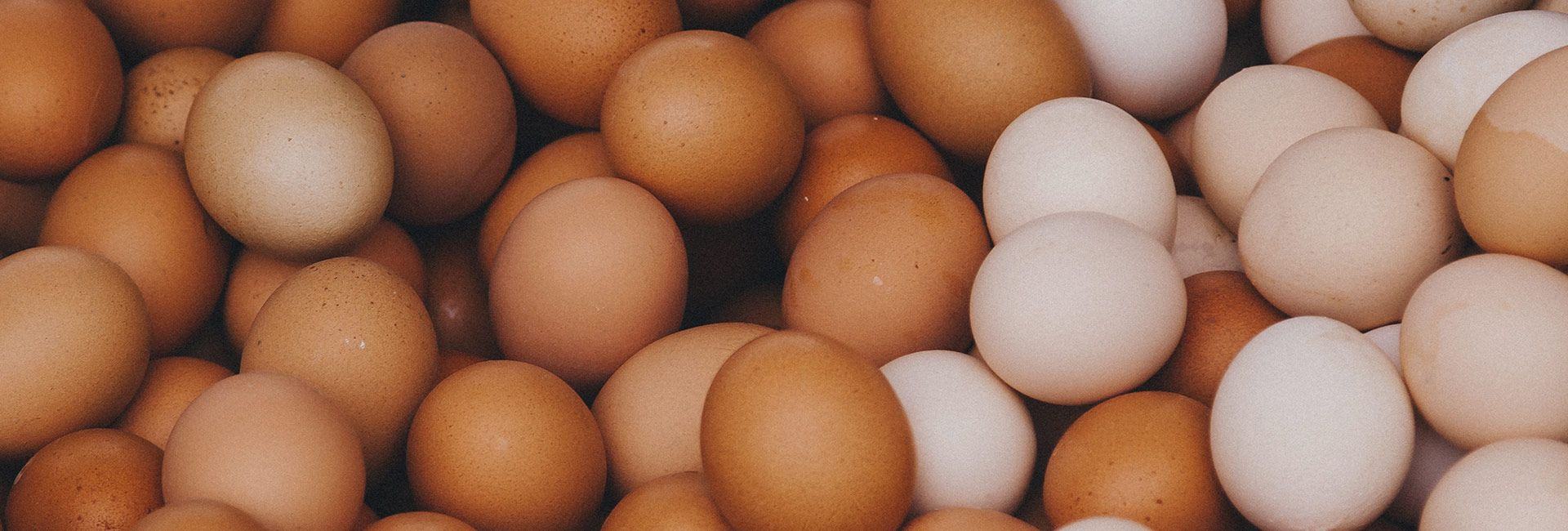 all your eggs