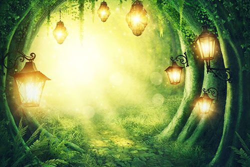 Enchanted Forest gallery 1